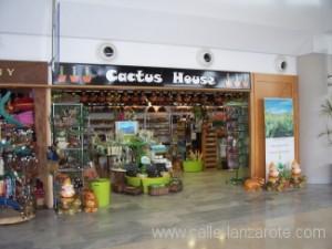 Cactus House, Arrecife Airport